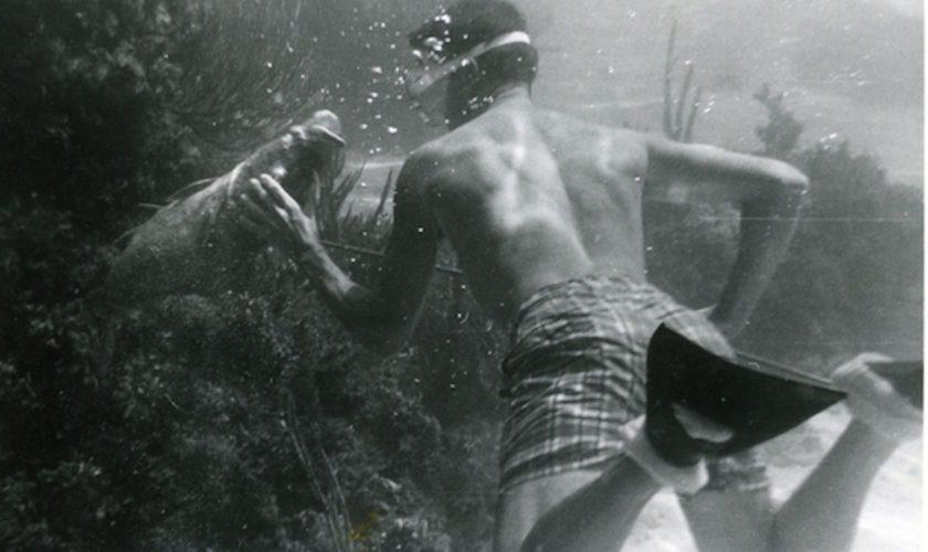 Spear-Fishing