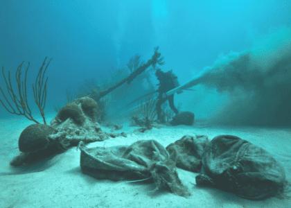 The Significance of Shipwrecks