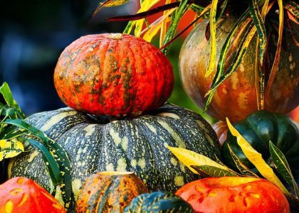 Fantastic Health Facts About Pumpkins