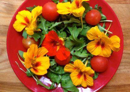 The Bermudian Cooks: Salad with Nasturtium Flowers