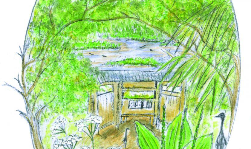 Strolling Seymour's Pond