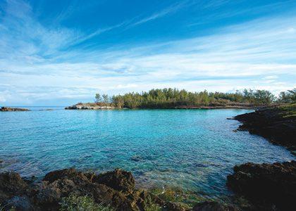 Into the Ocean: Whalebone Bay