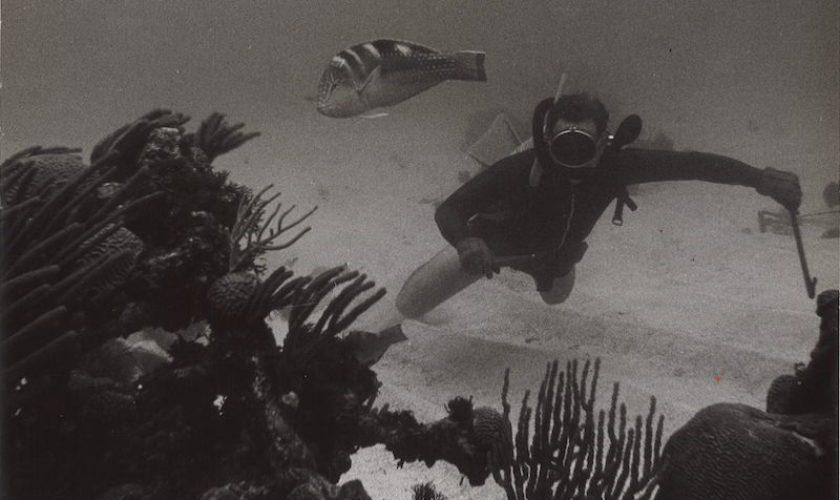 Gallery: Underwater Film Photographs