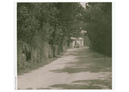 The Bermudian's Almanac: Lovers Lane