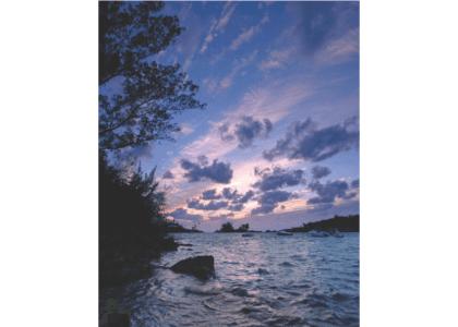 5 NATURAL Reasons to Love Bermuda