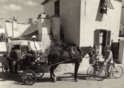 Vintage Horse & Carriages