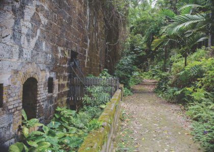 Exploring Fort Hamilton