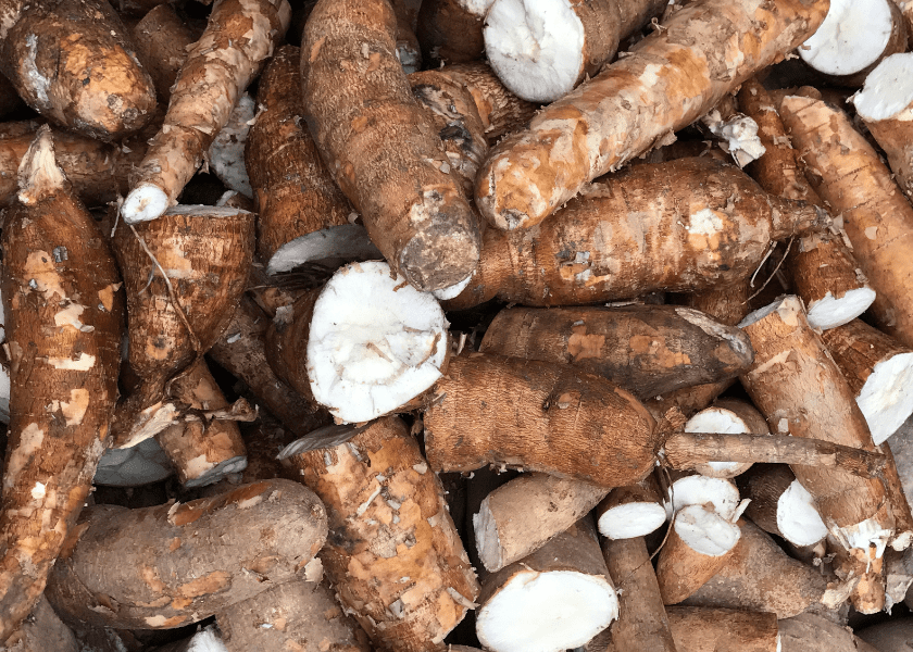 The Cultural Root of Cassava
