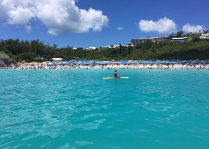 Does Sunscreen Mean Trouble in Paradise? BIOS Researchers Shed Light on Impacts of Sunscreen on Bermuda's Corals