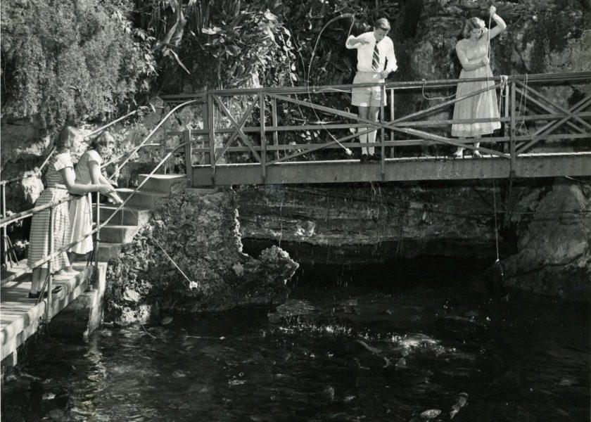 5 Historical Facts about Devil's Hole Aquarium