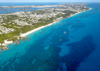 6 Ways Bermuda Led the World in Conservation